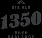 1350 – Die Alm über Saalbach